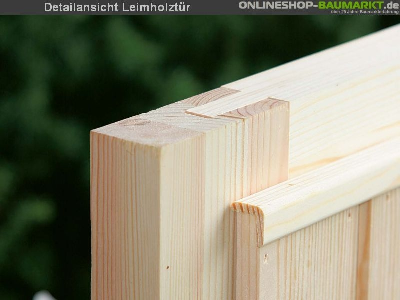 Wolff Finnhaus Pultdachhaus Maja 40B mit großzügiger